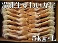 冷凍生ずわいがに 〔5kg・L (22~25肩)〕 冷凍便