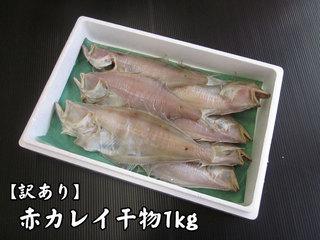 訳あり赤カレイ(鰈)干物【鳥取県・兵庫県産】1kg・送料無料 冷凍便