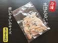 ほたるいか(生冷凍)【鳥取県・兵庫県産】〔250g〕 冷凍便