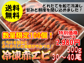 【数量限定】冷凍赤エビ【兵庫県産】500g(30~40尾)冷凍便・送料無料