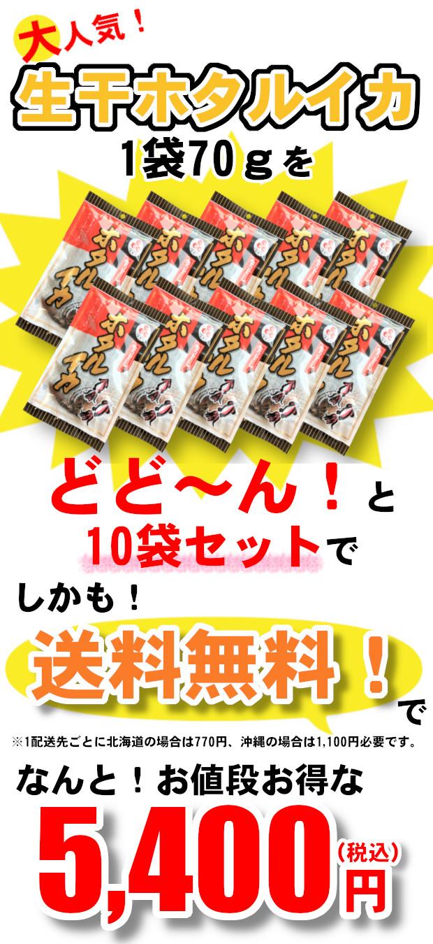 生干ホタルイカ_10入.jpg